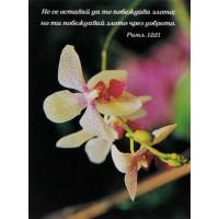 Картичка - Римляни 12:21